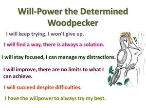 Determined woodpecker