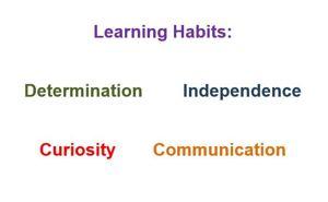 Habits doc